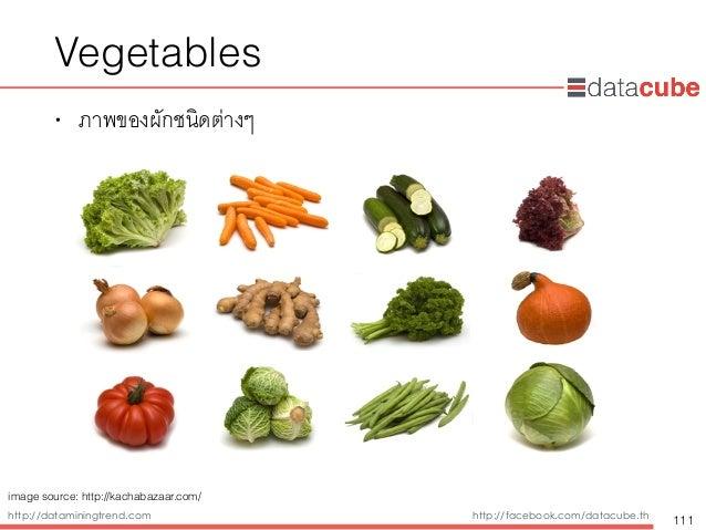http://dataminingtrend.com http://facebook.com/datacube.th Vegetables • ภาพของผักชนิดต่างๆ 111 image source: http://kachab...