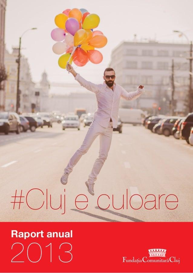 2013 Raport anual #Cluj e culoare