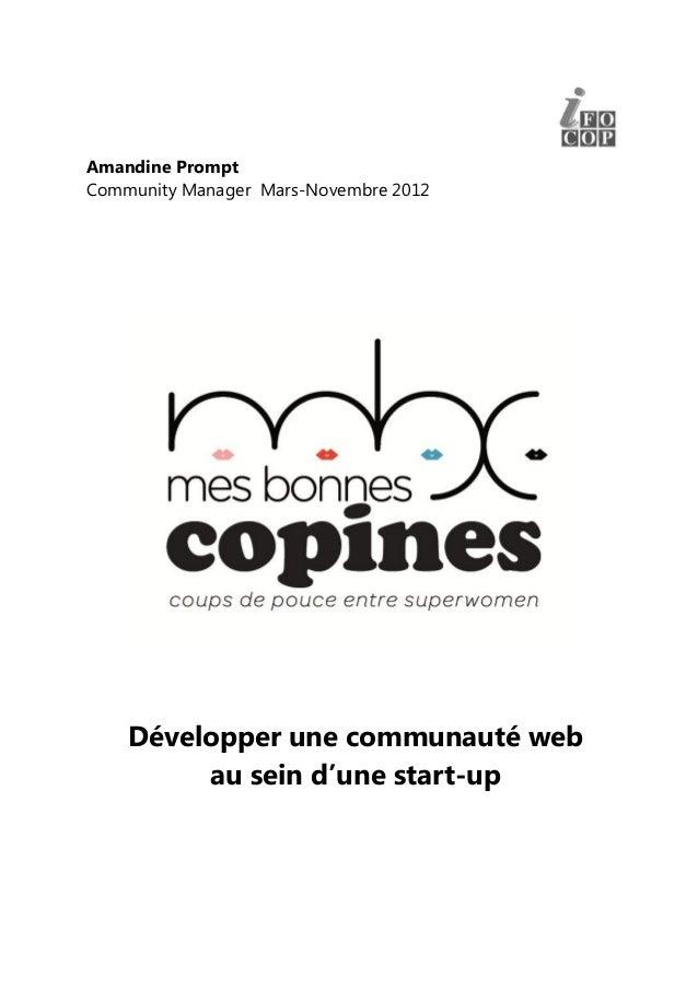 Amandine PromptCommunity Manager Mars-Novembre 2012    Développer une communauté web         au sein d'une start-up