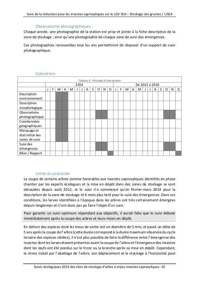 Suivi insectes saproxylophage 2014 cen aquitaine - Coupe branche brico depot ...
