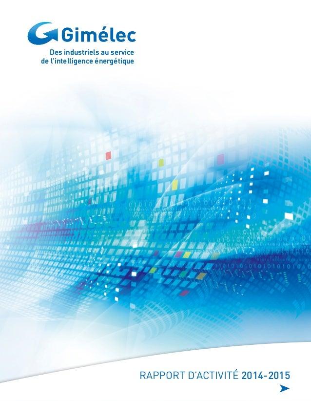 Des industriels au service de l'intelligence énergétique Des industriels au service de l'intelligence énergétique RAPPORT ...