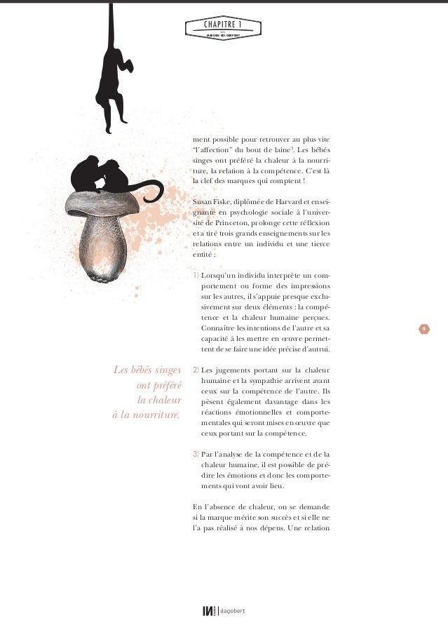 psychologie sociale susan fiske pdf