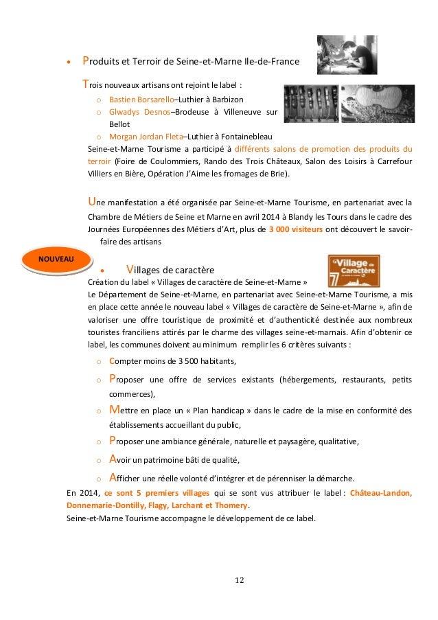 Rapport DActivit SeineEtMarne Tourisme