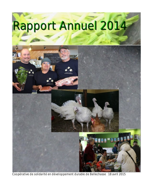RRaappppoorrtt AAnnnnuueell 22001144 Coopérative de solidarité en développement durable de Bellechasse 18 avril 2015