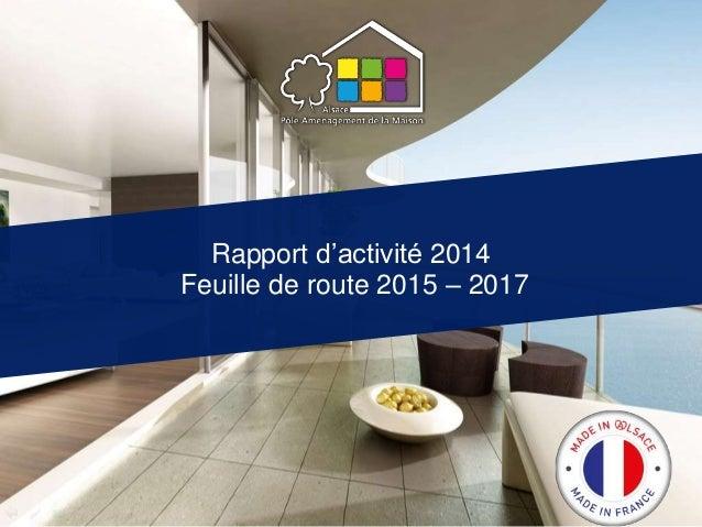 Rapport d'activité 2014 Feuille de route 2015 – 2017