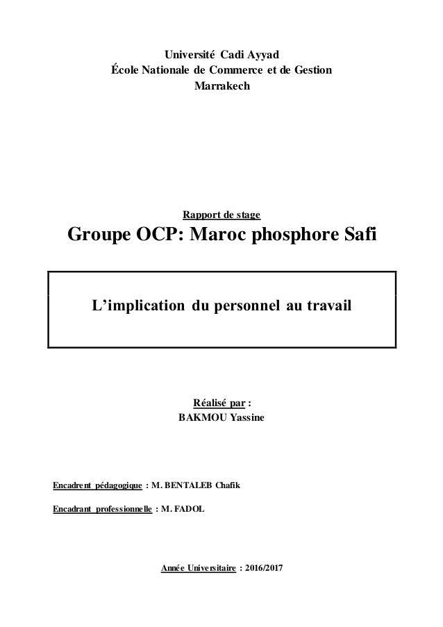 Rapport De Stage Ocp Safi L Implication Du Personnel Au