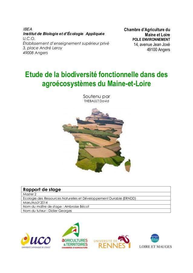 IBEA Institut de Biologie et d'Écologie Appliquée U.C.O. Établissement d'enseignement supérieur privé 3, place André Leroy...