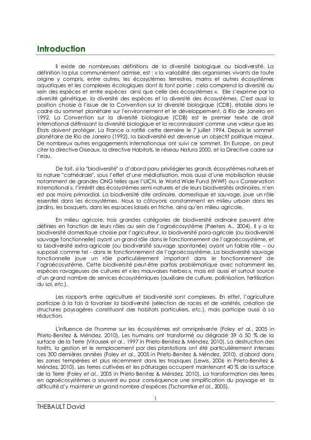 Rapport de stage Master 2_2014/2015