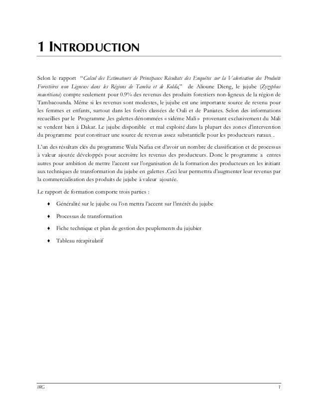 RAPPORT, AGROTRANSFORMATION DE LA JUJUBE Slide 3