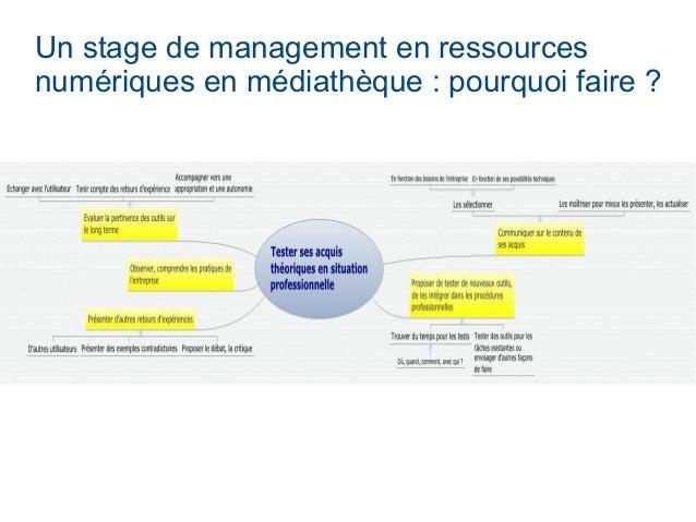 Un stage de management en ressources numériques en médiathèque : pourquoi faire ?