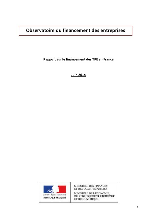 1  Observatoire du financement des entreprises  Rapport sur le financement des TPE en France  Juin 2014