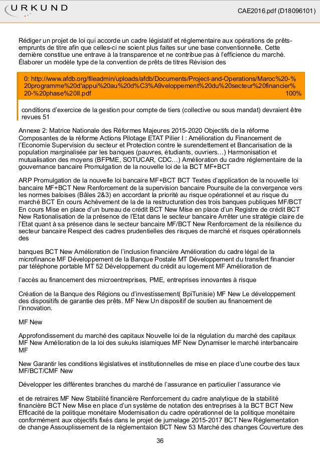 Rapport plagiat cae (2) (1)