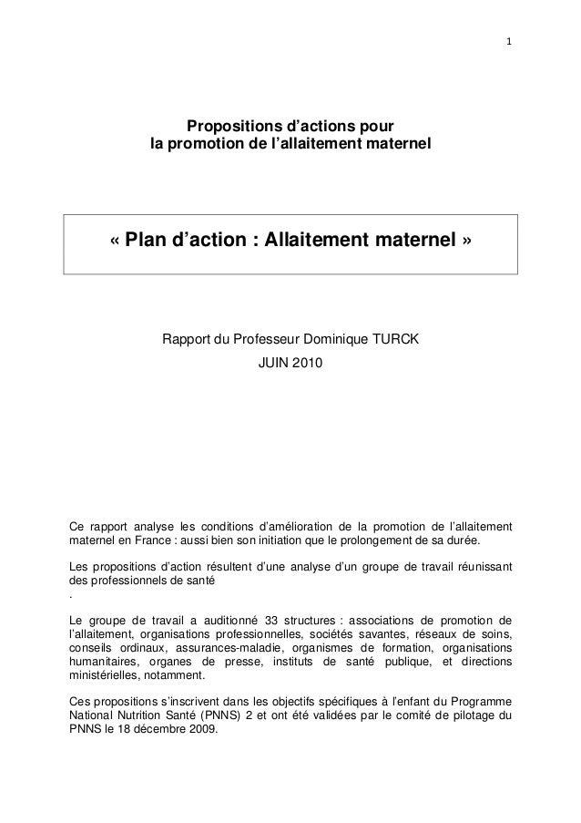 1  Propositions d'actions pour la promotion de l'allaitement maternel  « Plan d'action : Allaitement maternel »  Rapport d...