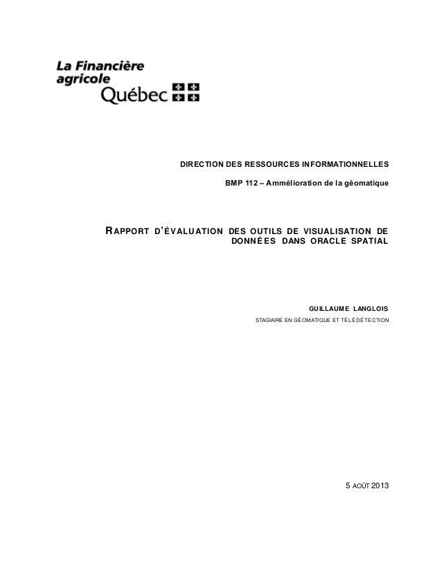 DIRECTION DES RESSOURCES INFORMATIONNELLES BMP 112 – Ammélioration de la géomatique  R APPORT  D ' É V ALUATION DES OUTILS...