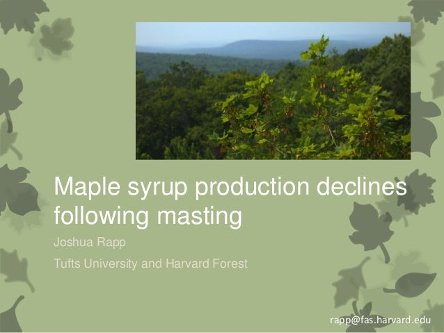 Maple syrup production declines following masting Joshua Rapp Tufts University and Harvard Forest  rapp@fas.harvard.edu