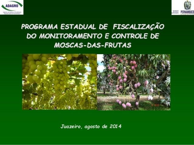 PROGRAMA ESTADUAL DE FISCALIZAÇÃO DO MONITORAMENTO E CONTROLE DE MOSCAS-DAS-FRUTAS  Juazeiro, agosto de 2014
