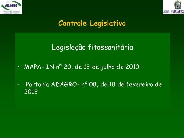 Programa Estadual de Fiscalização do Monitoramento e Controle de Moscas-das-Frutas Slide 2