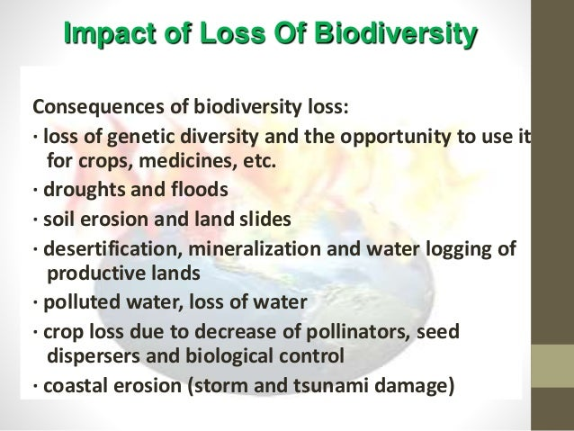 conservation of biological diversity essay Was primarily designed to assess the conserving biological diversity for sustainable uses in tropical conservation of biological diversity is vital to human.