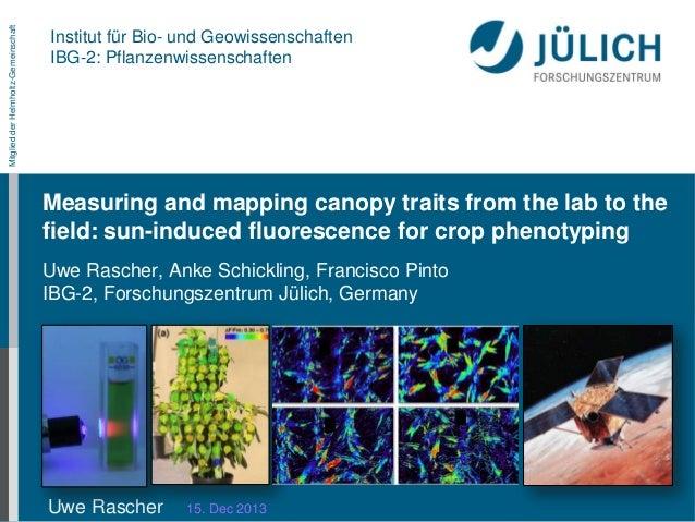 Mitglied der Helmholtz-Gemeinschaft  Institut für Bio- und Geowissenschaften IBG-2: Pflanzenwissenschaften  Measuring and ...