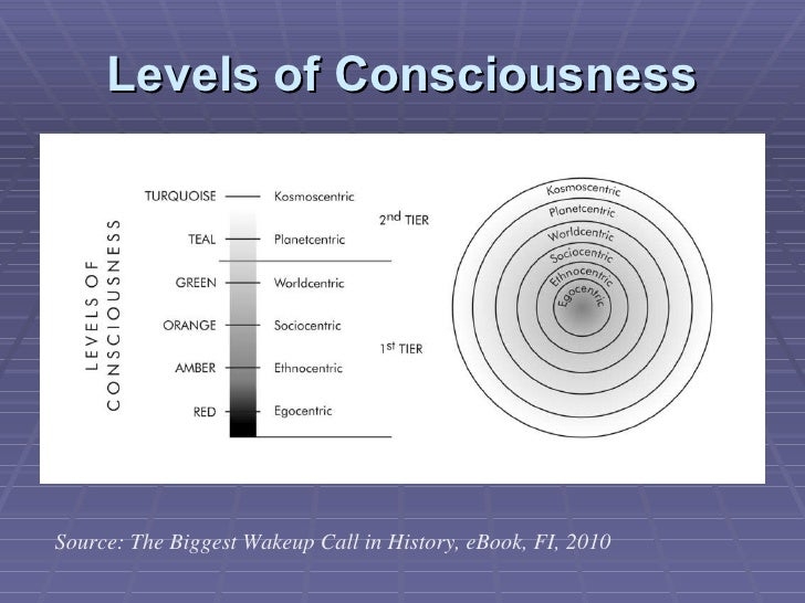 Levels of Consciousness Source: The Biggest Wakeup Call in History, eBook, FI, 2010