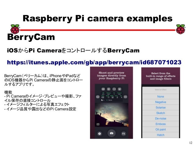 12 xx Raspberry Pi camera examples BerryCam iOSからPi CameraをコントロールするBerryCam https://itunes.apple.com/gb/app/berrycam/id687...