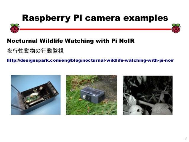 13 xx Raspberry Pi camera examples Nocturnal Wildlife Watching with Pi NoIR 夜行性動物の行動監視 http://designspark.com/eng/blog/noc...