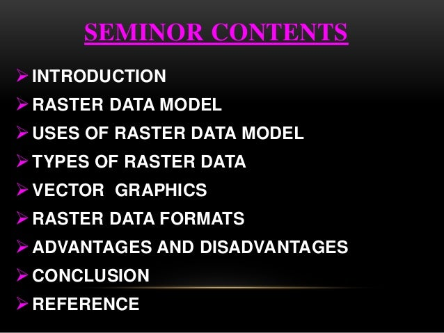 Raster data model