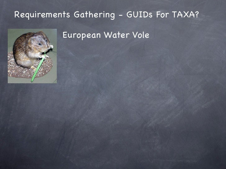 Requirements Gathering - GUIDs For TAXA?            European Water Vole
