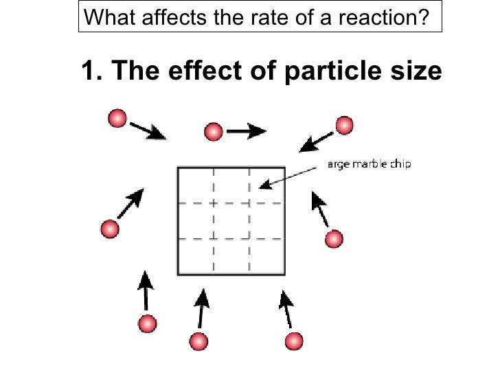 does temperature affect the reaction rate How can the answer be improved.
