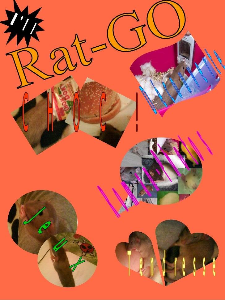 CHOC !  Tendresse Rat-GO Jeux Roman-Photos Découverte N° 1 !