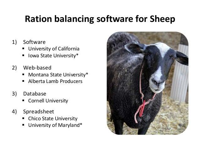 Spartan Beef Ration Software - opolisxilus