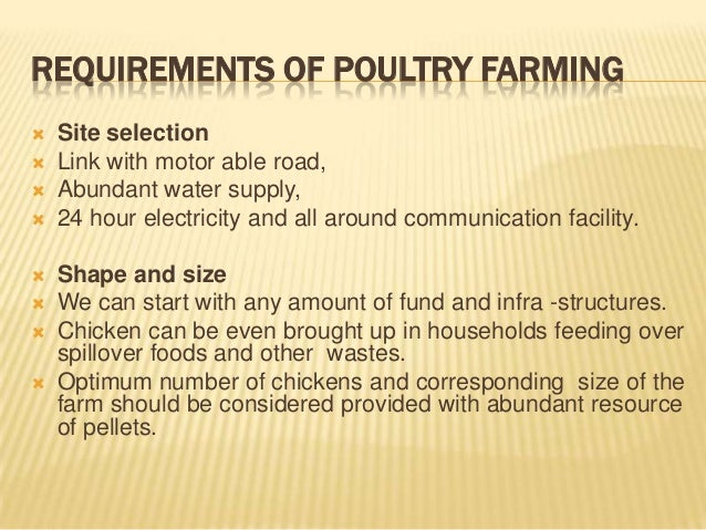 broiler poultry farming business plan