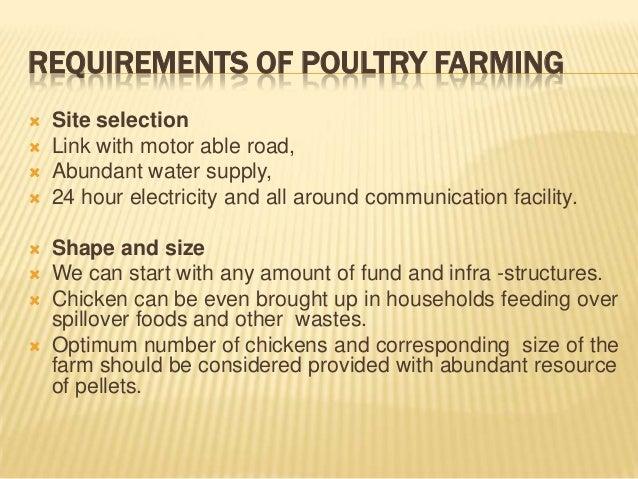 Poultry farming business plan ppt