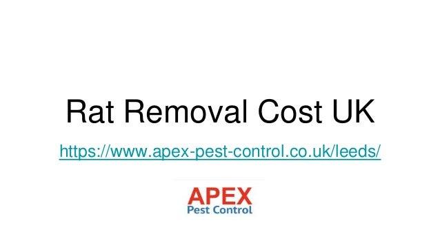 Rat Removal Cost UK https://www.apex-pest-control.co.uk/leeds/