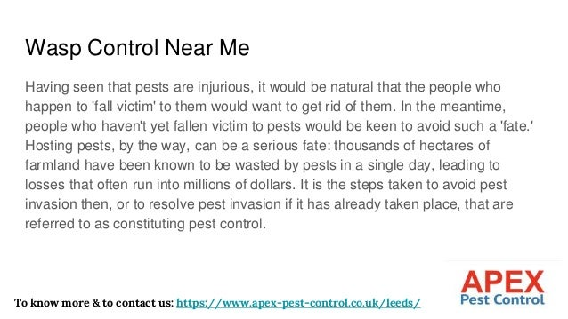 Wasp Control Near Me Having seen that pests are injurious, it would be natural that the people who happen to 'fall victim'...