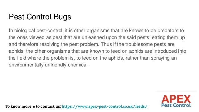 Pest Control Bugs In biological pest-control, it is other organisms that are known to be predators to the ones viewed as p...