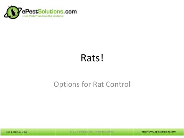 Call 1-888-523-7378Call 1-888-523-7378Rats!Options for Rat Controlhttp://www.epestsolutions.com/© 2012 ePestSolutions. All...