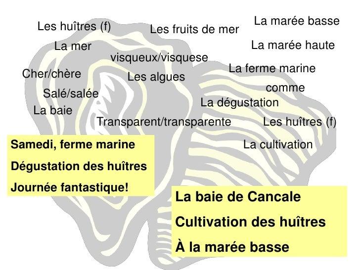 Fruit Commencant Par La Lettre V. Alphabet De Fruits Et De Lgumes ...