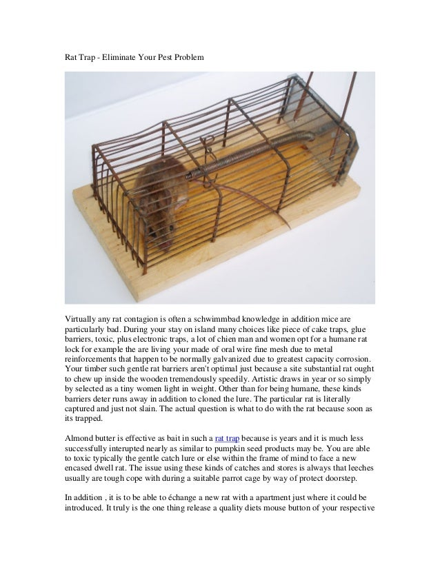 Rat Trap - Eliminate Your Pest ProblemVirtually any rat contagion is often a schwimmbad knowledge in addition mice arepart...