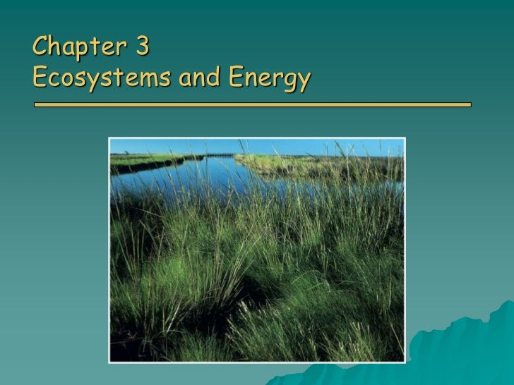 Chapter 3Ecosystems and Energy