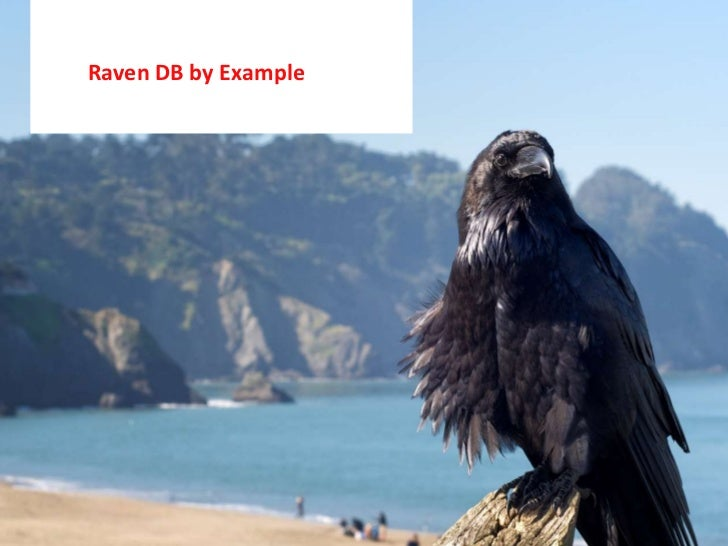 Raven DB by Example<br />