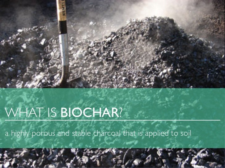 WHAT IS BIOCHAR?a highly porous and stable charcoal that is applied to soil