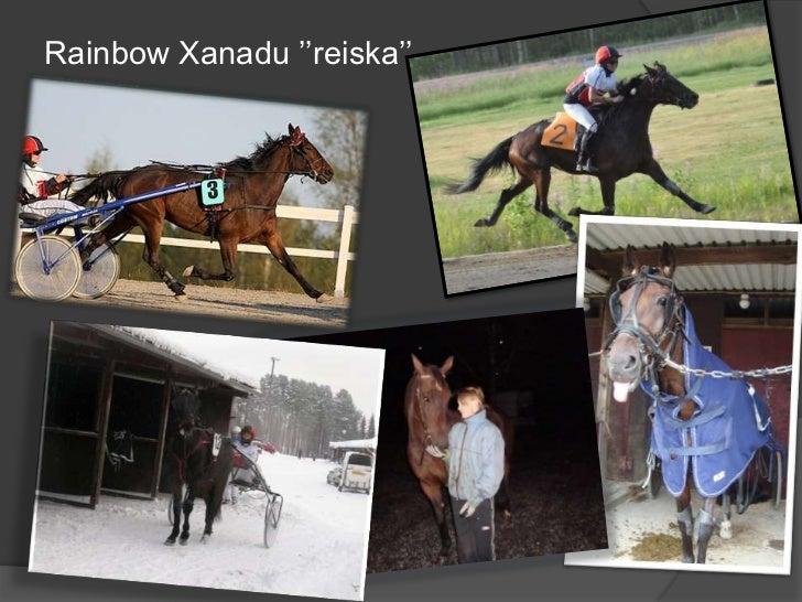 Rainbow Xanadu ''reiska''<br />