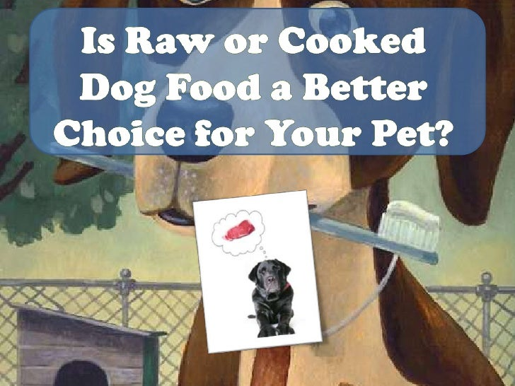 Is Raw or Cooked Dog Food a Better Choice for Your Pet?<br />
