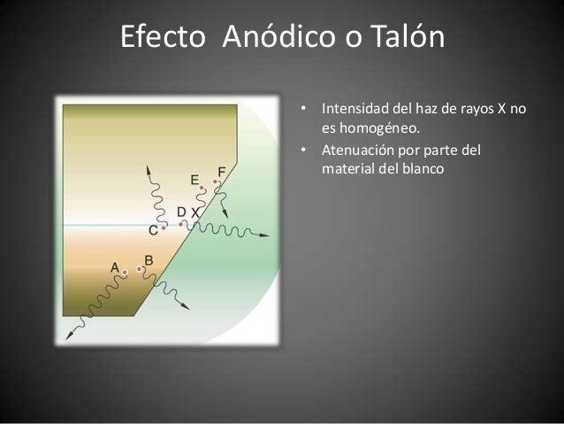 radiodiagnostico-5-638 Medica En Blanco on