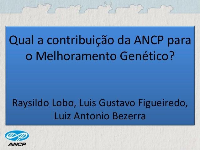 Qual a contribuição da ANCP para o Melhoramento Genético? Raysildo Lobo, Luis Gustavo Figueiredo, Luiz Antonio Bezerra