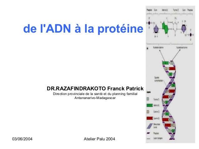 de lADN à la protéine             DR.RAZAFINDRAKOTO Franck Patrick               Direction provinciale de la santé et du p...