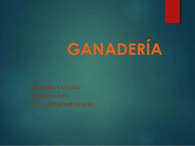 GANADERÍA GANADO VACUNO DAVID SANTS ING. AGROINDUSTRIAL