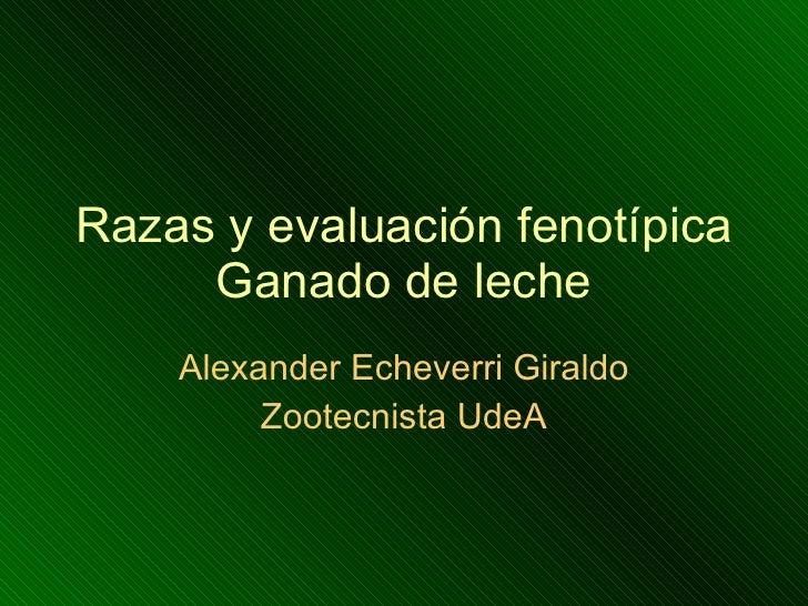Razas y evaluación fenotípica Ganado de leche Alexander Echeverri Giraldo Zootecnista UdeA