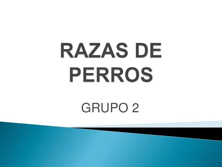 RAZAS DE PERROS<br />GRUPO 2<br />